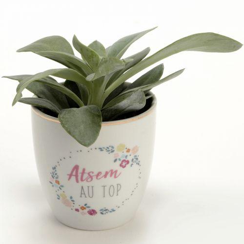 Mini pot - Atsem au top